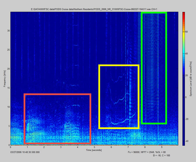Spectrograph with highlighted boxes